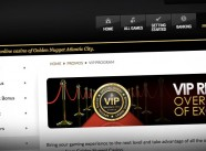 New Jersey Internet Gambling Brief: Demystifying the Golden Nugget's Success